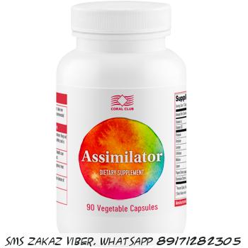 Ассимилятор - пищеварительные ферменты
